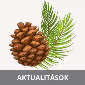 aktualitasok-hirek-anasztazia-hu-webaruhaz